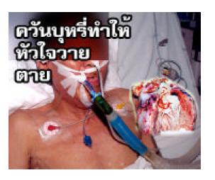 thaila2