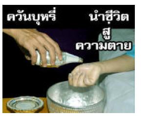 thaila3